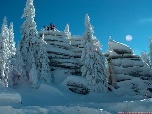 Schneeschuhwandern Dreisessel: Naturverträglich